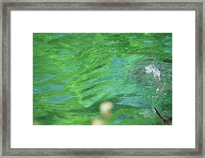 Bubble In The Pool Framed Print