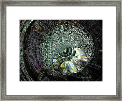 Bubble Trouble Framed Print by Donna Blackhall