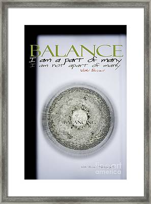 Framed Print featuring the photograph Bubbles Balance Bubbles by Vicki Ferrari