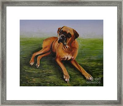 Bubbles  Boxer Framed Print by Tony Calleja
