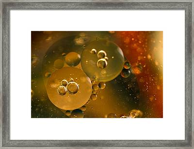 Framed Print featuring the photograph Bubbles by Cathy Donohoue