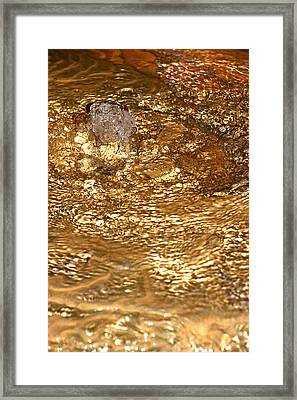 Bubbling Cavern Spring Framed Print by T C Brown