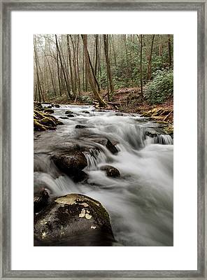 Bubbling Mountain Stream Framed Print by Debbie Green