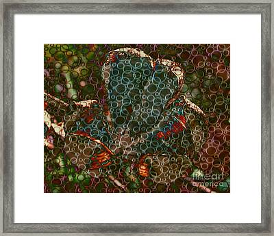 Bubbling Up Framed Print by Kathie Chicoine