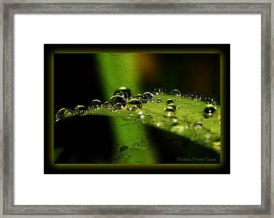 Framed Print featuring the photograph Bubbly by Michaela Preston