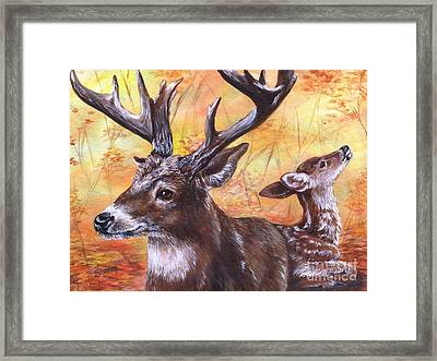 Buck And Fawn Framed Print by Sharon Molinaro