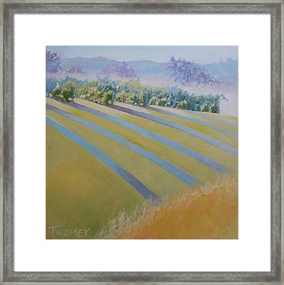 Buck Mountain Vineyards No.2 Framed Print by Catherine Twomey