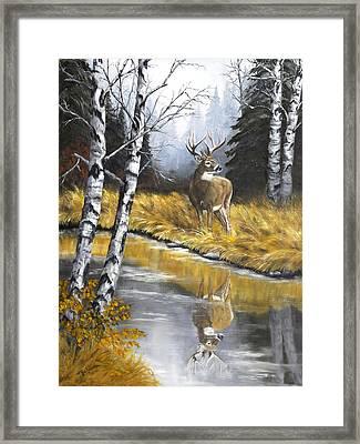Buck Reflection Framed Print