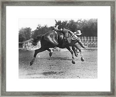Bucked Off On Bronco Ride Framed Print