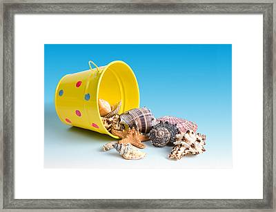 Bucket Of Seashells Still Life Framed Print