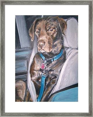 Buckle Up. Framed Print by Martha Suhocke