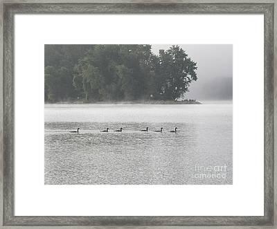 Buckleys Island In Morning Framed Print