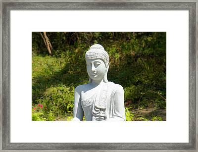 Buddha Framed Print by Aged Pixel