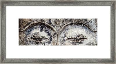 Framed Print featuring the photograph Buddha Eyes by Roselynne Broussard