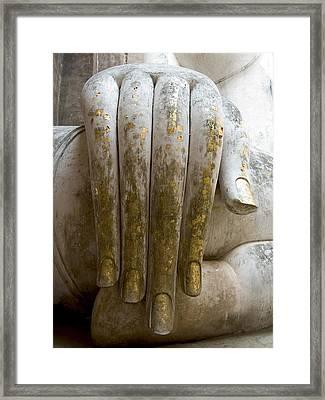Buddha Hand Framed Print by Zina Zinchik