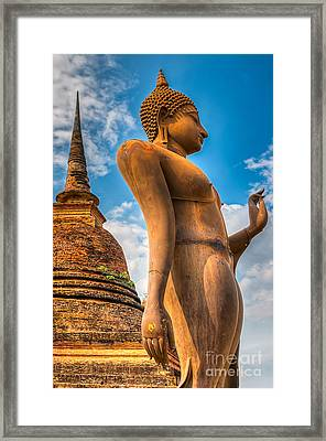 Buddha Statue Framed Print by Adrian Evans