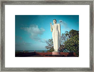 Buddha Statue And Crow Framed Print by Paul Kennedy