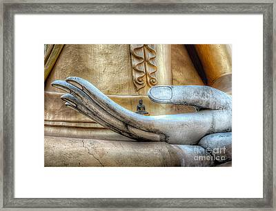 Buddha's Hand Framed Print by Adrian Evans
