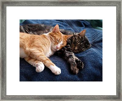 Buddies For Life Framed Print