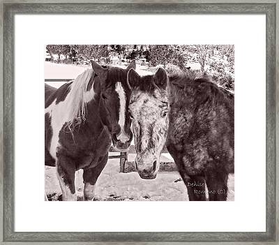 Buddies In Snow Framed Print by Denise Romano