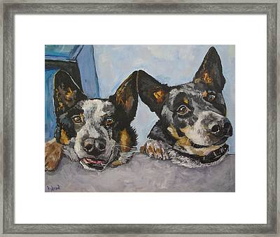 Buddy And Bandit Framed Print by Kellie Straw