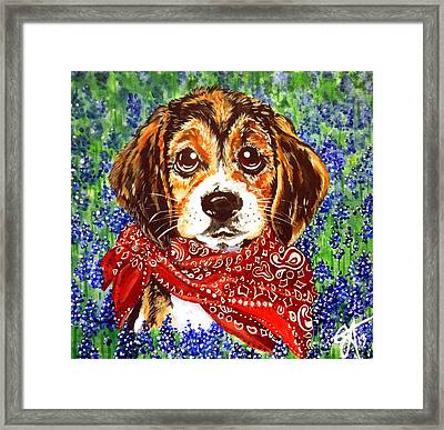 Buddy Framed Print by Jackie Carpenter