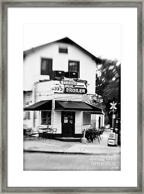 Buds  Framed Print by Scott Pellegrin