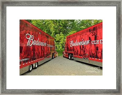 Budweiser Clydesdale Trucks Framed Print by Jt PhotoDesign