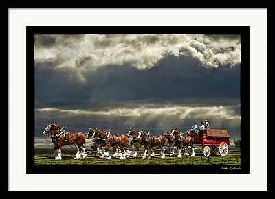 Horse Websites Framed Prints