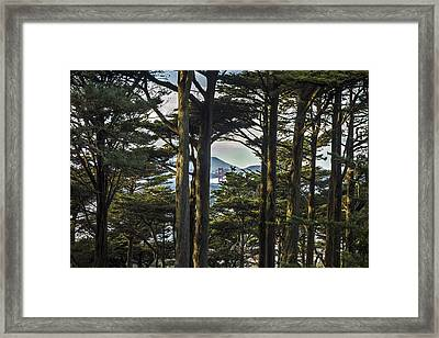 Buena Vista Framed Print by Jeremy Jensen