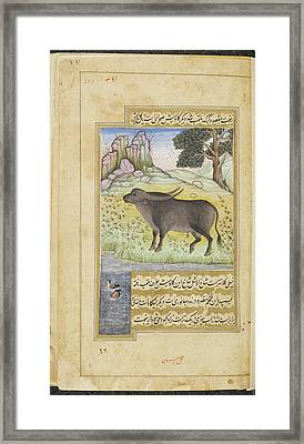 Buffalo Framed Print by British Library