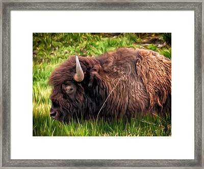 Framed Print featuring the painting Buffalo Cat Nap by Michael Pickett