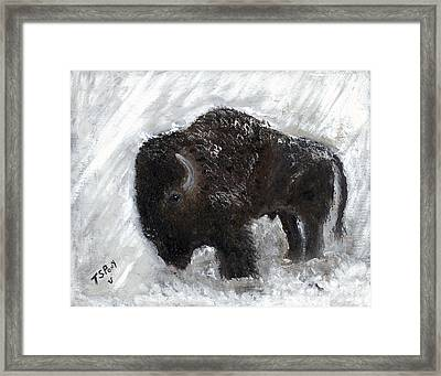 Buffalo In The Snow Framed Print