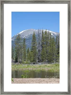 Buffalo Mountain Framed Print by Juli Scalzi