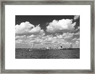 Buffalo Skyline Framed Print by Cindy Haggerty