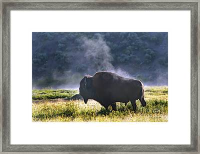 Buffalo Steam-signed-#2170 Framed Print by J L Woody Wooden