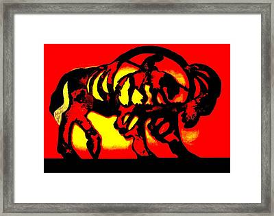 Buffalo Sun Set Framed Print by Larry Campbell