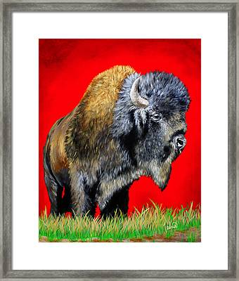Buffalo Warrior Framed Print by Teshia Art