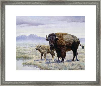 Buffalo Watering Hole Framed Print by Gregory Perillo