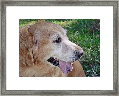 Buffie Framed Print