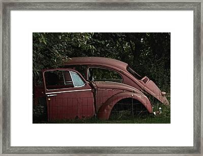 Bug Front To Back Framed Print