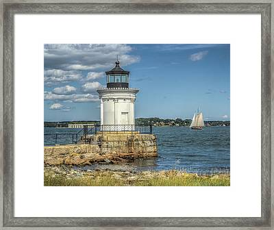 Framed Print featuring the photograph Bug Light by Jane Luxton