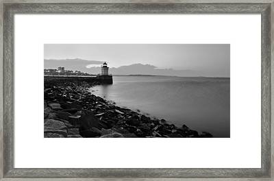 Bug Light Framed Print by Paul Noble