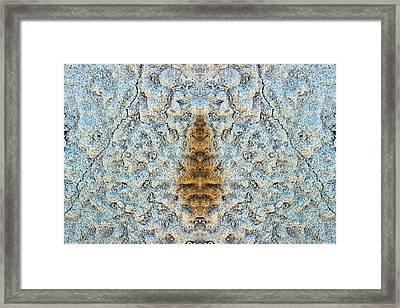 Bug Rock Framed Print