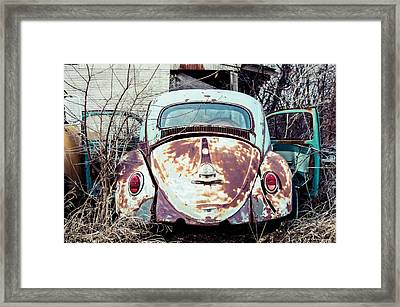 Framed Print featuring the photograph Buggin' Out by Brian Bonham