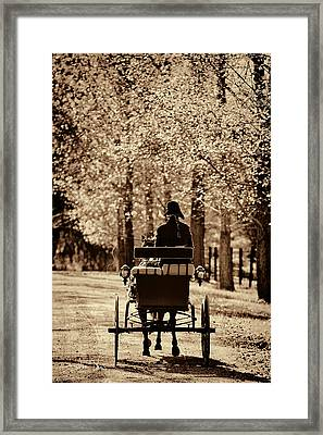 Framed Print featuring the photograph Buggy Ride by Joan Davis