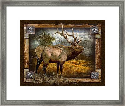 Bugling Elk Framed Print by JQ Licensing
