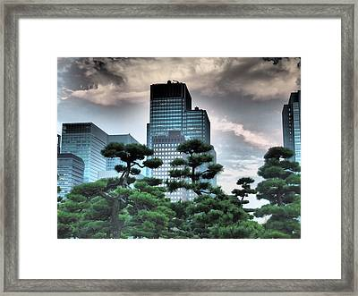 Building And Trees Framed Print