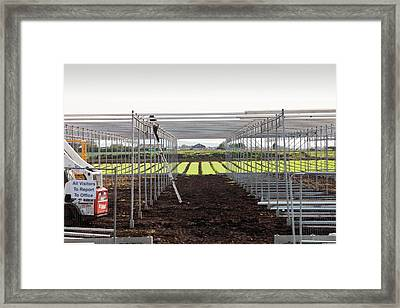 Building Greenhouses Framed Print by Ashley Cooper