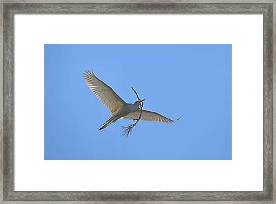 Framed Print featuring the photograph Building Material by Judith Morris